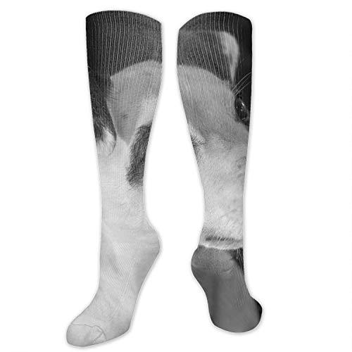Männer/Frauen Fun Dress Socks -Artistic Colourful Funny Novelty Crazy Socks
