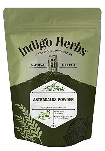 Indigo Herbs Astragalus | Tragant Pulver 250g