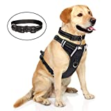 Best Dog Harness No Pulls - WINSEE Dog Harness No Pull, Pet Harnesses Review