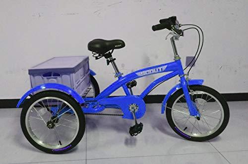 "Scout 16"" Rad Dreiräder, Kinder Dreirad, Teenager Dreirad, kleines Dreirad (Blau)"