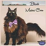 Black Maine Coon Calendar 2022: 16 Month Squire Calendar 2022