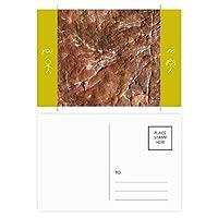 茶色の岩粗面パターン 友人のポストカードセットサンクスカード郵送側20個