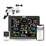 Raddy WF-100C Stazione Meteo Professionali con Sensore Esterno, Termometro e Sensori di Umidità per...