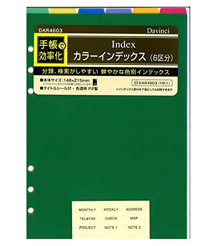 レイメイ藤井 ダヴィンチ 手帳用リフィル カラーインデックス 6区分 A5 ビビッドカラー