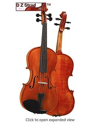 D Z Strad Violin Model 101 with Solid Wood with Case, Bow, and Rosin...