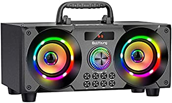 BabYoung 60W Portable Bluetooth Speaker with Subwoofer