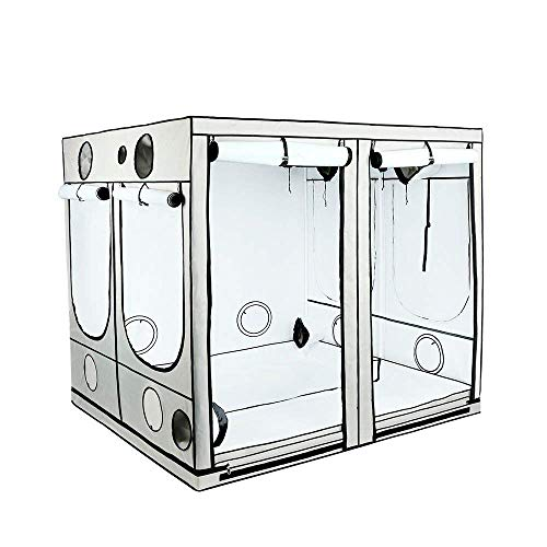 Imagen del productoArmario de cultivo interior HOMEbox® Ambient Q240 PAR+ (240x240x200cm)