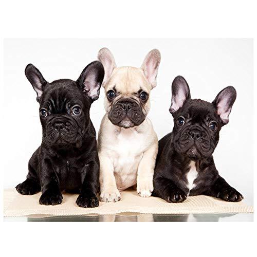 DIY de madera Puzzles grandes adultos 1000 piezas Bulldog francés lindo mascotas perros Imagen de la decoración de la habitación Regalos de Navidad