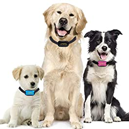 Bark Collar Advanced Intelligence Anti Bark Dog Collar. NO SHOCK – Stop Dogs Barking with Sound & Vibration, Small & Large Dogs, No Spray – Dog Bark Collar with Psychology E-book (Black Blue Pink)