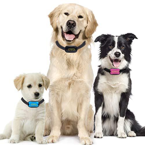 Antibell Halsband Hund Gerät zum Stoppen von Hundebellen OHNE SCHOCK SPRAY! SICHER HARMLOS Anti-Gebell Training mit Ton Vibration für kleine mittlere Große Rassen Erziehungshalsband hundehalsband… (1)