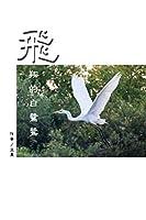 飛翔的白鷺鷥(繁體中文版): The Flying Egret (Traditional Chinese Edition)