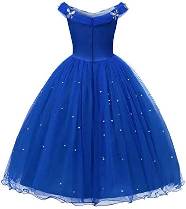 Cinderella flower girl dress _image1