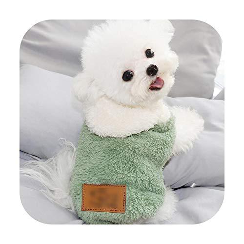 Chihuahua - Abrigo con capucha para perro, para otoo o invierno, clido, para perros pequeos, talla XXL, 6.0-9.0 kg