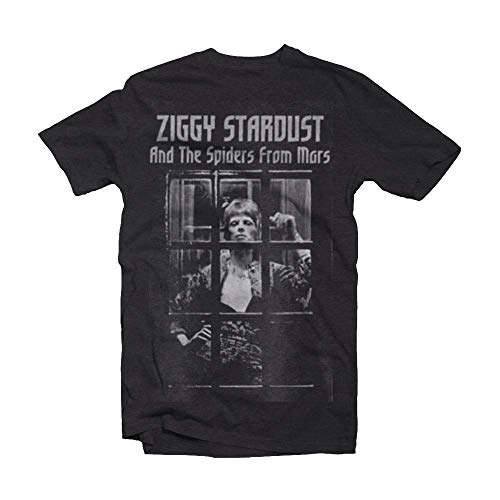 Unisex Ziggy Stardust and the Spiders from Mars T-shirt, XS to XXL