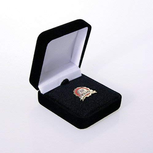 10 Year Employee Anniversary Lapel Pin - Black Velvet Presentation Box - Gold and Red - Gold-Plated Metal - Work Anniversary Gift - Bulk Order Option