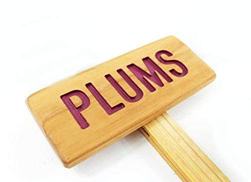 Philadelphia Mall PLUMS Rustic Fruit Tree Sign Hand Sale SALE% OFF tree Routed garden sign mar