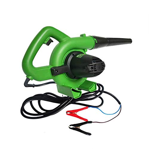 Leaf Blower Vehicle-specific Blower, 12V/24V Large Cars and Small Cars, 26000 RPM - Lightweight 1yess (Color : 5m+Hose, Size : 24V)