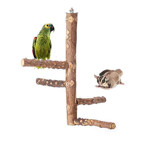 Amakunft Papageien-Sitzstange Holz Natur Holz Papageien stehend Klettern Papageien Käfige Spielzeug Vogelbaum für Papageien Zucker Glider Hamster Reptil
