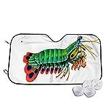 Sombra Delantera del Parabrisas del Coche,Crustáceos Peacock Mantis Camarón Arrecife Acuario,Parasol Parasol para Bloquear los Rayos UV y protección Solar contra el Calor