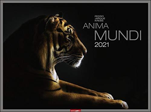 Anima Mundi Kalender 2021