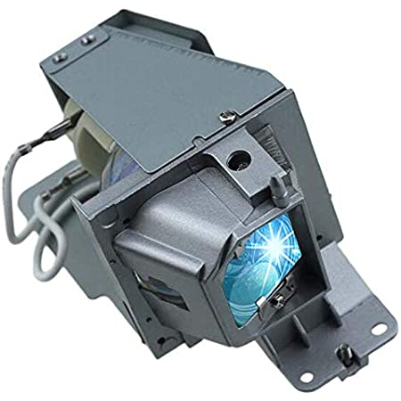 Lanwande BL-FU195B Replacement Projector Lamp Bulb with Housing for OPTOMA DS347 DS348 DW315 EH330 EH331 EH345 H183X S321 S331 W330 W331 Projectors