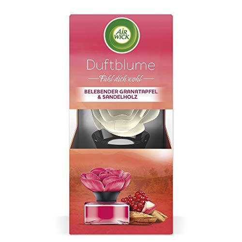 Air Wick Duftblume – Duft: Belebender Granatapfel & Sandelholz – 1 x frischer Raumduft im Blumendesign
