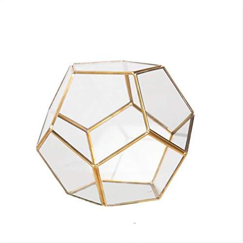 cypressen Geometrisches Glas Terrarium Box Schmuckschatulle Glas Sukkulente Pflanzgefäß Deko Multifunktional Ewige Blume Geschenkbox Micro Landschaft Glasabdeckung Dekoration