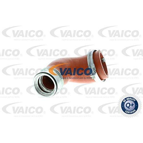 VAICO V10-2870-VAI Motorräume