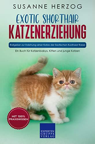 Exotic Shorthair Katzenerziehung - Ratgeber zur Erziehung einer Katze der Exotischen Kurzhaar Rasse: Ein Buch für Katzenbabys, Kitten und junge Katzen