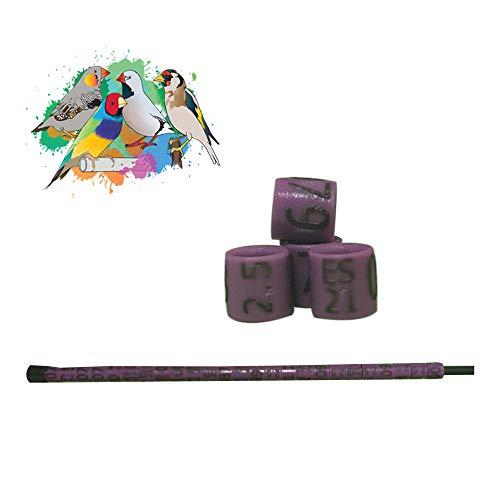 nestQ Anillas Canarios Españolitos Jilgueros Exoticos 2021 Color Violeta Federativo Policromo Grabado Laser Cerradas 2.5 mm Numeradas con Año Marcado 1 Tira 25 Anillas