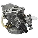 LIQIANG Motor de aluminio Carbohidrato Carburador Stroke Mini Quad ATV Dirt MiniMoto Go Kart Buggy NUEVO Pocket Bike 47cc 49cc