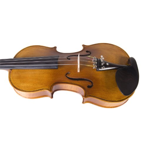 Cecilio CVN-500 Solidwood Ebony Fitted Violin with D'Addario Prelude...