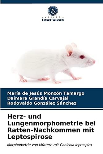 Herz- und Lungenmorphometrie bei Ratten-Nachkommen mit Leptospirose: Morphometrie von Müttern mit Canicola leptospira
