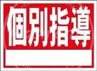 「個別指導」 ティンサイン ポスター ン サイン プレート ブリキ看板 ホーム バーために