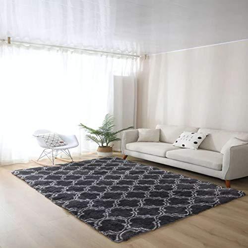 Luxury Velvet Shag Area Rug,Extra Soft And Comfy Carpet,Plush Carpets Rugs For Decor Bedroom Living Room Kids Nursery,Modern Indoor Plush Fluffy Rugs-C 80x160cm(31x63inch)