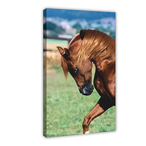 Cartel de lona de crin de caballo marrón hierba dormitorio decoración deportes paisaje oficina habitación decoración regalo 50 × 75 cm marco estilo1