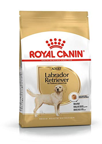 Royal Canin 35298 Breed Labrador Retriever 12 kg