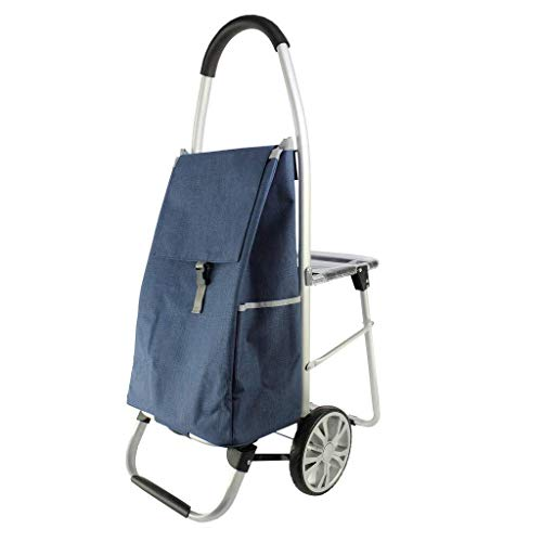 LQBDJPYS Portable Seated Folding Trolley With Portable Waterproof Fabric Capacity Increased luggage bags (Color : Blue, Size : 60 * 100cm)