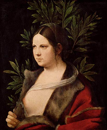 Aluminum Metal Novelty Danger Sign 12x16Inch,Giorgione Famous Paintings(Young Woman Laura),Metal Wall Sign Plaque Vintage Retro Signs Art Picture Print