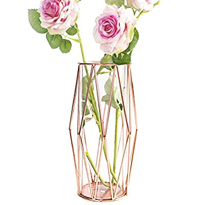 Gelible Geometric Glass Flower Vase Metal Holder, Crystal Clear Transparent Planter Flowers Vase,Handcrafted Plating Metal Vase,Clear Vase Decorative for Home Office Wedding Holiday Party Celebrate
