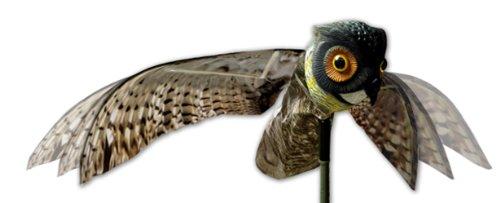 Vogel-Longboard Prowler X Predator Dekofigur Eule