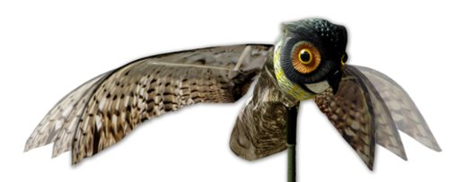 Bird-X Prowler Fake Owl Decoy with Moving Wings - Realistic Bird Scare, Hawk, Pigeon, and Squirrel Repellent, Pest Deterrent, Yard and Garden Ornaments
