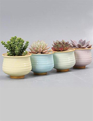 XYZ Semplici Piante Succulente Ceramica Vaso Di Fiori, Mini Planter ( Pacchetto Di 4) delicato durevole
