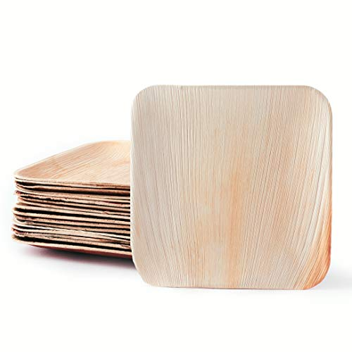 Plantvibes edle Palmblatt-Teller, kompostierbar & CO2-neutral - 25 Stück der Größe 23 cm - Einweg-Geschirr aus Palmblatt, Party-Geschirr biologisch abbaubar, Palmblatt-Geschirr