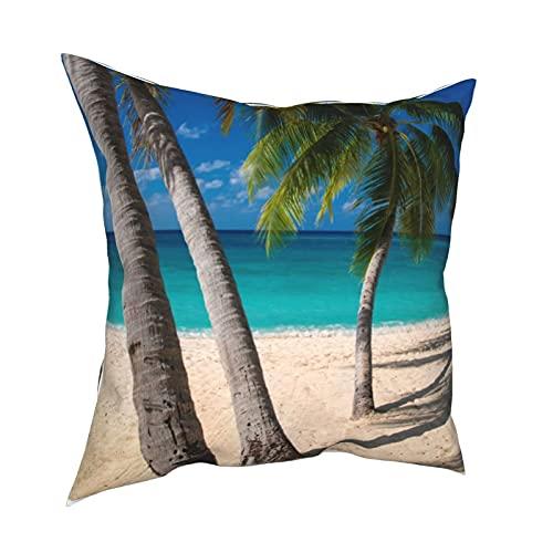 Reebos Funda de almohada decorativa de 45,7 x 45,7 cm, palmeras y agua turquesa a lo largo de siete millas para sofá, silla, dormitorio, sofá