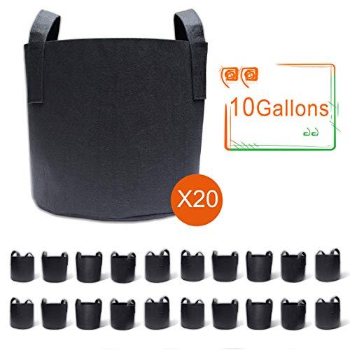 10 gallon pot - 9