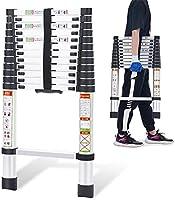 RIKADE 伸縮はしご 耐荷重150kg 軽量 持ち運びやすい 折り畳み 伸縮梯子 多機能アルミはしご 自動ロック スライド式 伸縮自在 梯子 室内室外両用 スライド式 (フック付き)
