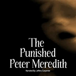 The Punished audiobook cover art