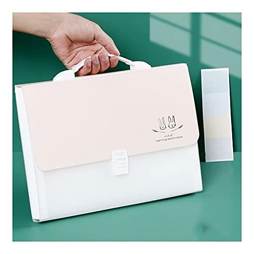 liangzishop Cartelline Portadocumenti 4-Pack Bill Fisarmonica/Carta/documento/ricevuta Organizzatore cartelle Colorate Pocket Cartelle 13 Pocket Office Solutions (Blu/Rosa) Cartelline (Color : Pink)