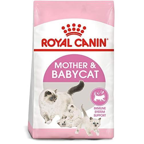 Royal Canin Feline Health Nutrition Mother & Babycat Dry Cat Food 3